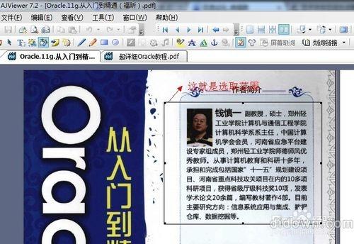 怎么复制PDF中的文字